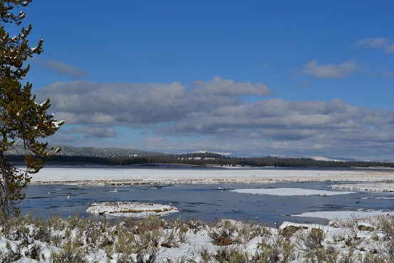 Harriman State Park in Idaho  11-15-12